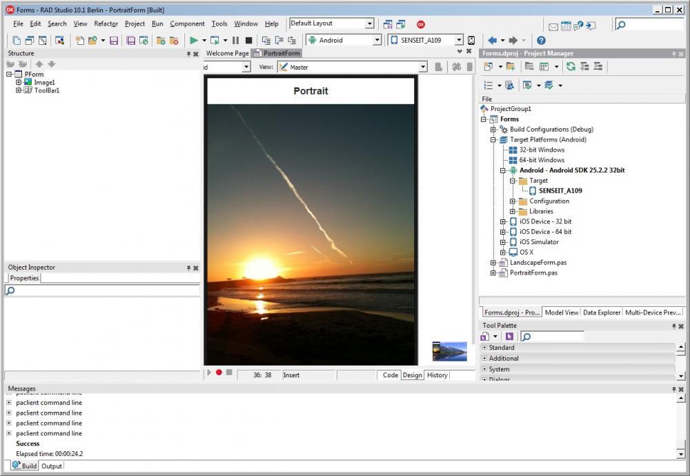 App Delphi.jpg