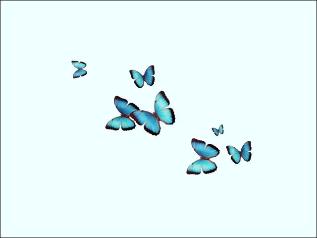 640x480.9.png.e09b3ef2d776e89623826d158ba5dc16.png